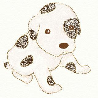 パートの飼い犬ノア画像