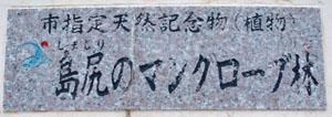 島尻マングローブ林01_ポッパンク