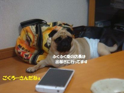 DSC03005_20130122202054.jpg