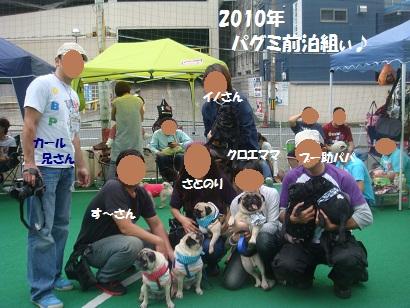 DSC03384_20130214201532.jpg