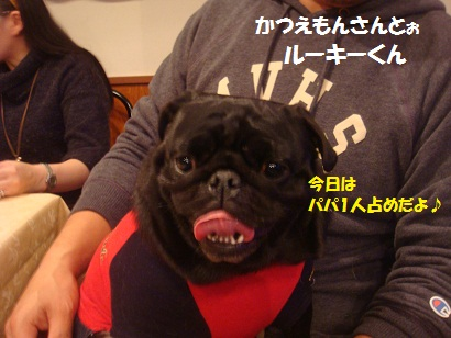 PMBS7448_20130126052931.jpg