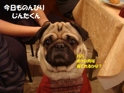 PMBS7483.jpg