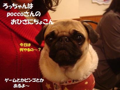 PMBS7615.jpg
