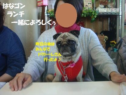 PMBS7767.jpg