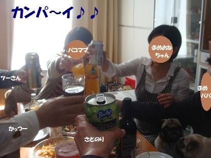 PMBS8388.jpg