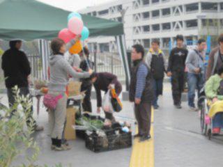 pv_marche20110416-04.jpg