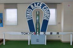 美浦トレーニングセンター!