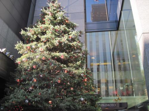 ミキモトのクリスマスツリー