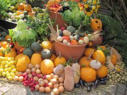 収穫祭&ハロウィン
