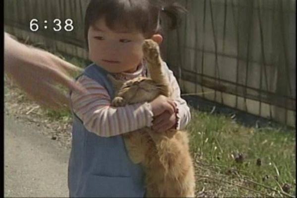 動物147
