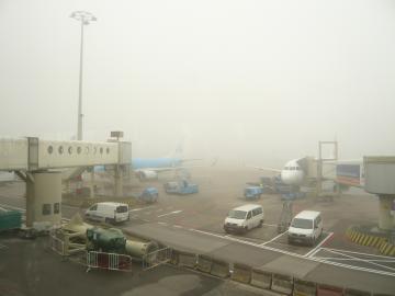 schiphol 31 mist