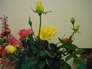 2012 jan bloemen
