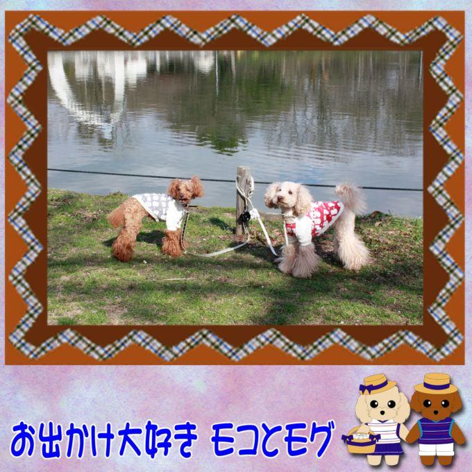 14_20130223143558.jpg