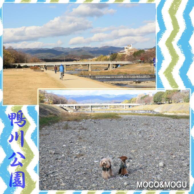 16_20101215193608.jpg