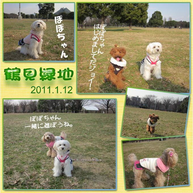 1_20110120081235.jpg