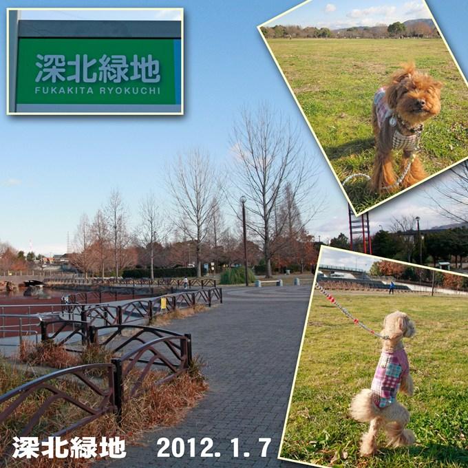 1_20120109071451.jpg