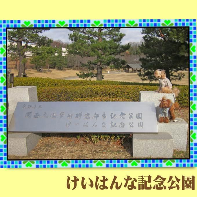 20_20130119141612.jpg