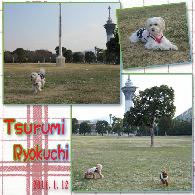 2_20110120081235.jpg