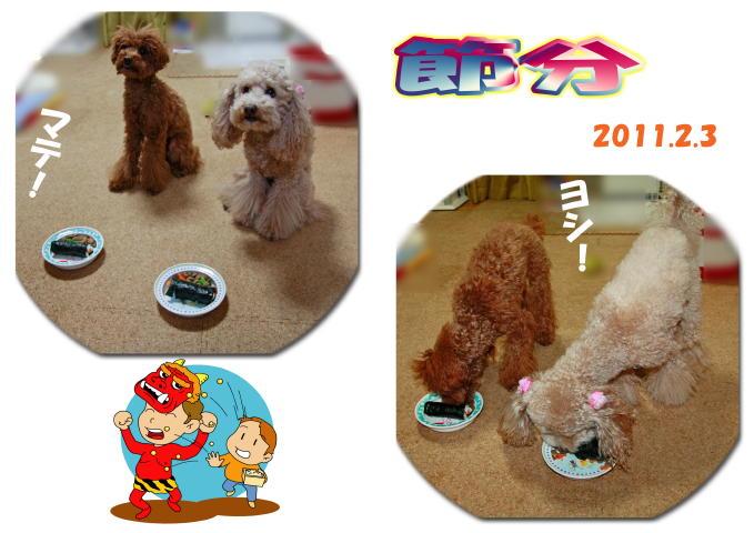 2_20110203203159.jpg