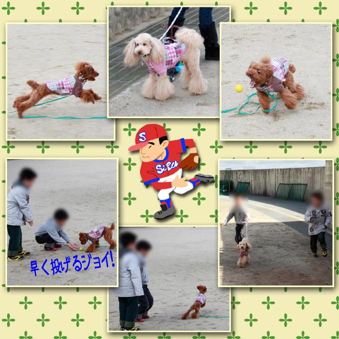 2_20111211183117.jpg
