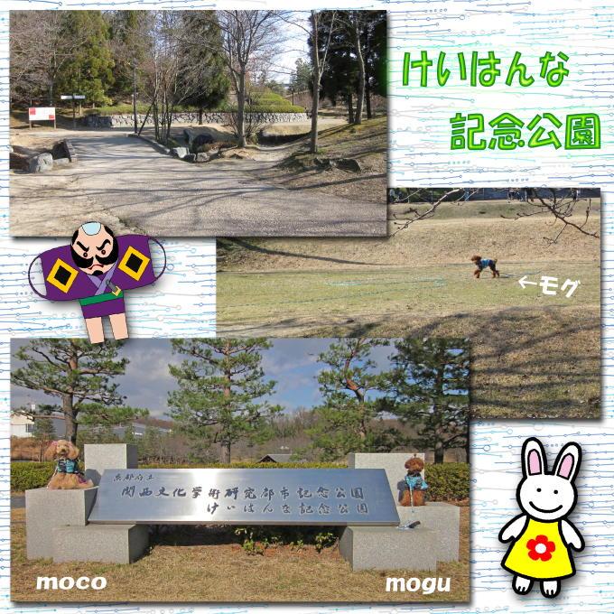 3_20110110205518.jpg