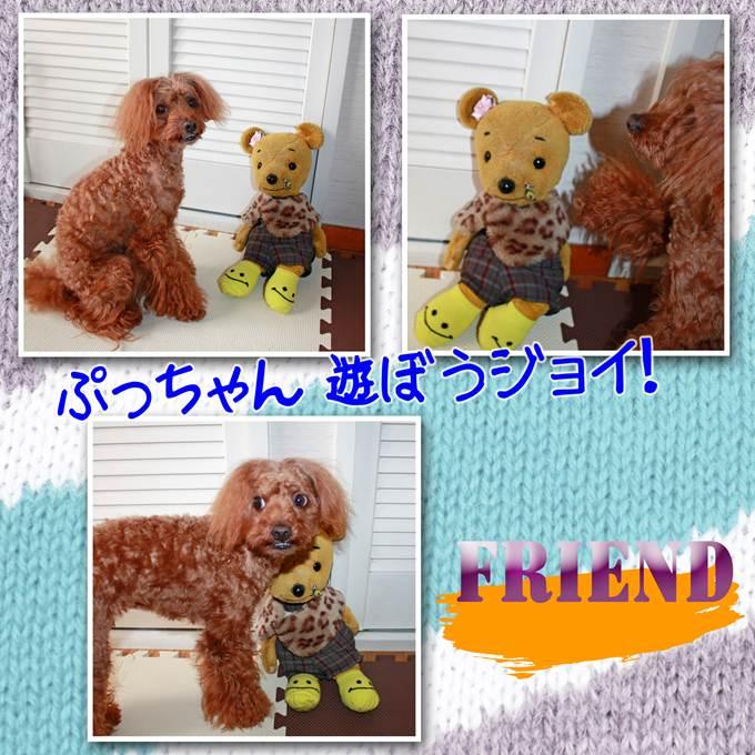 3_20130119133508.jpg