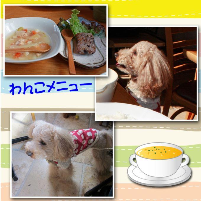 4_20130223085357.jpg
