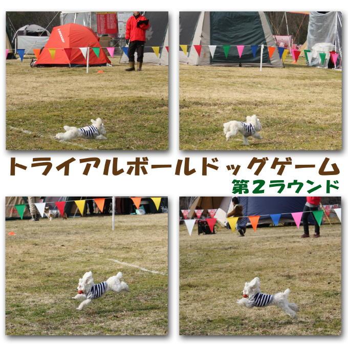 5_20110125204331.jpg