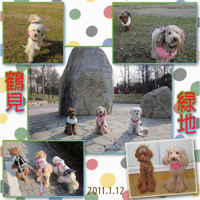 6_20110120081234.jpg