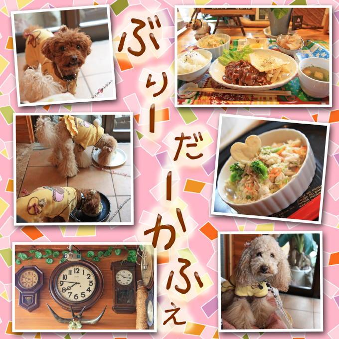 9_20101221190349.jpg