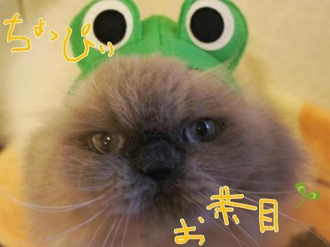 18)ちょっぴりお茶目
