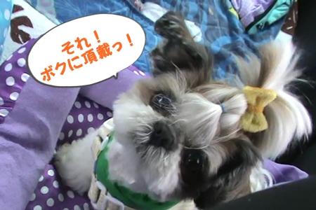 13 高坂SA休憩プンバ