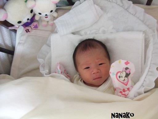 妊婦・出産 108