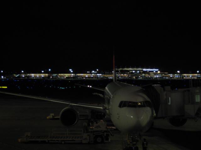 羽田国際ターミナル?
