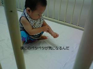 moblog_af345a46.jpg