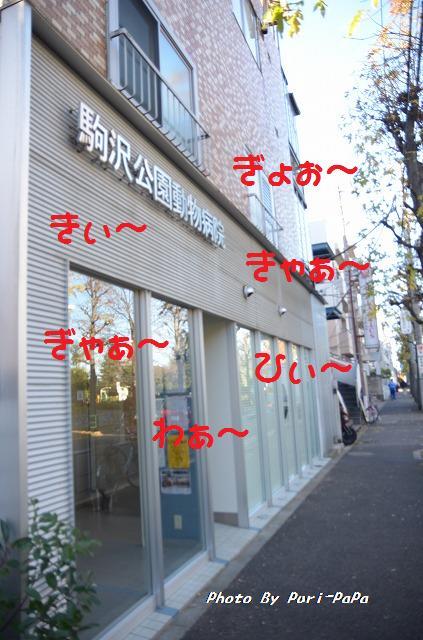 DSC_0024_20111220200642.jpg