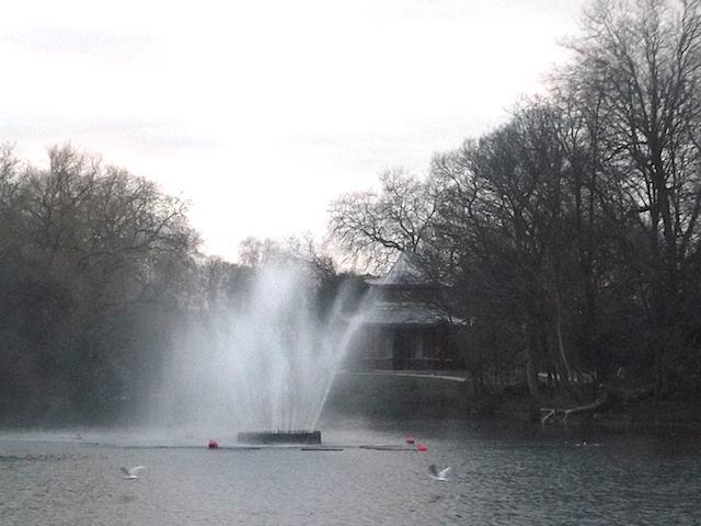 2013-02-02 vpark2