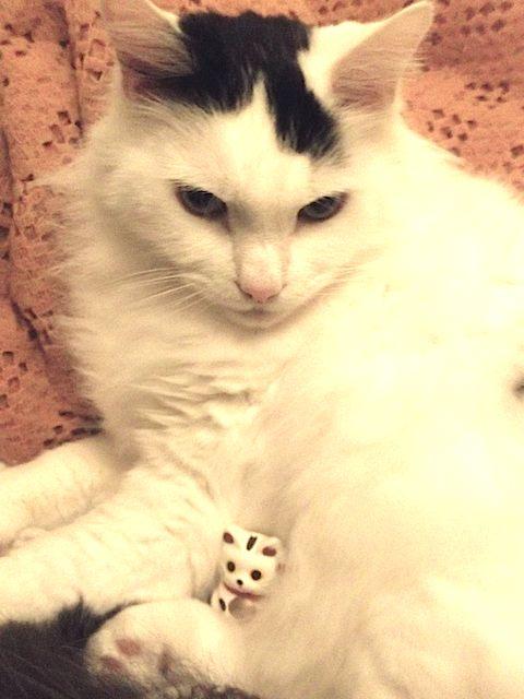 2013-02-10 招き猫2