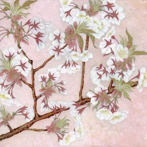 「桜のアーチ」裏(左)