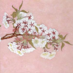 「桜のアーチ」表(右)