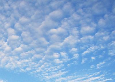 空のハシゴ