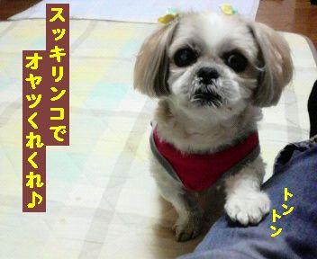 2012041023290000.jpg