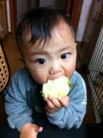 秋神(あきみ)りんご丸かじり3時間後