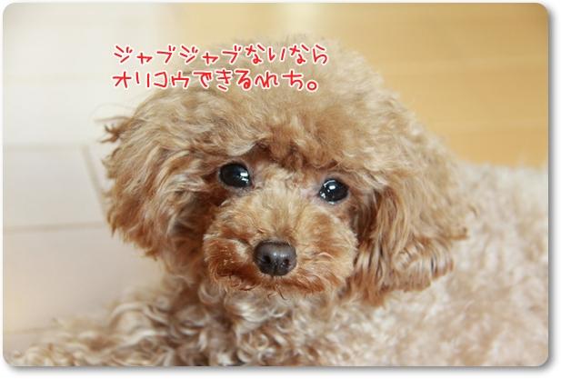 IMG_6651.jpg