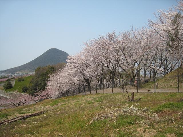 飯山運動公園付近