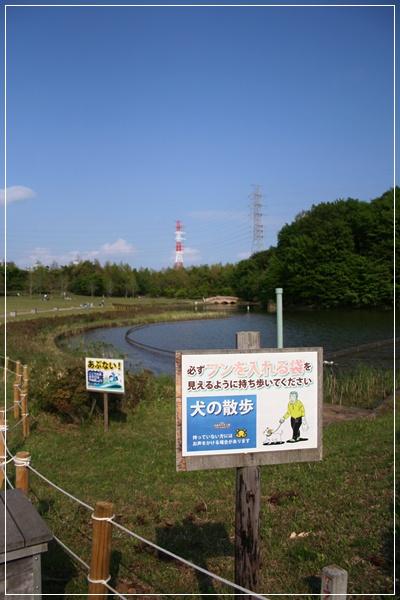 20110523_6.jpg
