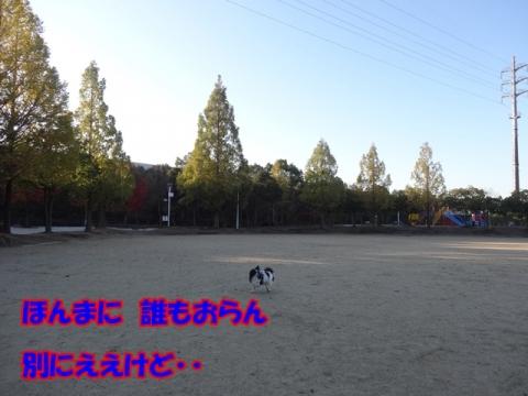 115_20131126193043125.jpg