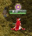 橙鯖 ラフィの日常-姫座り.jpg
