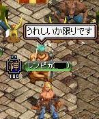 橙鯖 ラフィの日常-たかぽん噛み 編集.jpg