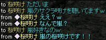 橙鯖 ラフィの日常-嵐の桜咲け.jpg